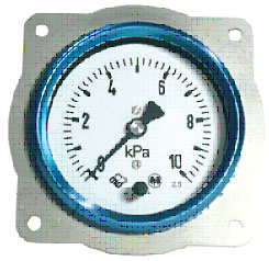 ДНМП-100М1 (0-6 кПа) кл. т. 1,5